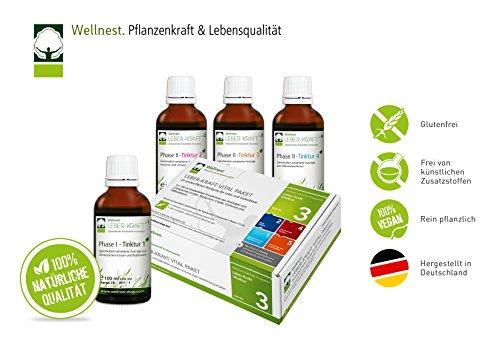 Wellnest Leber-Kraft Detox-Kur-Paket...