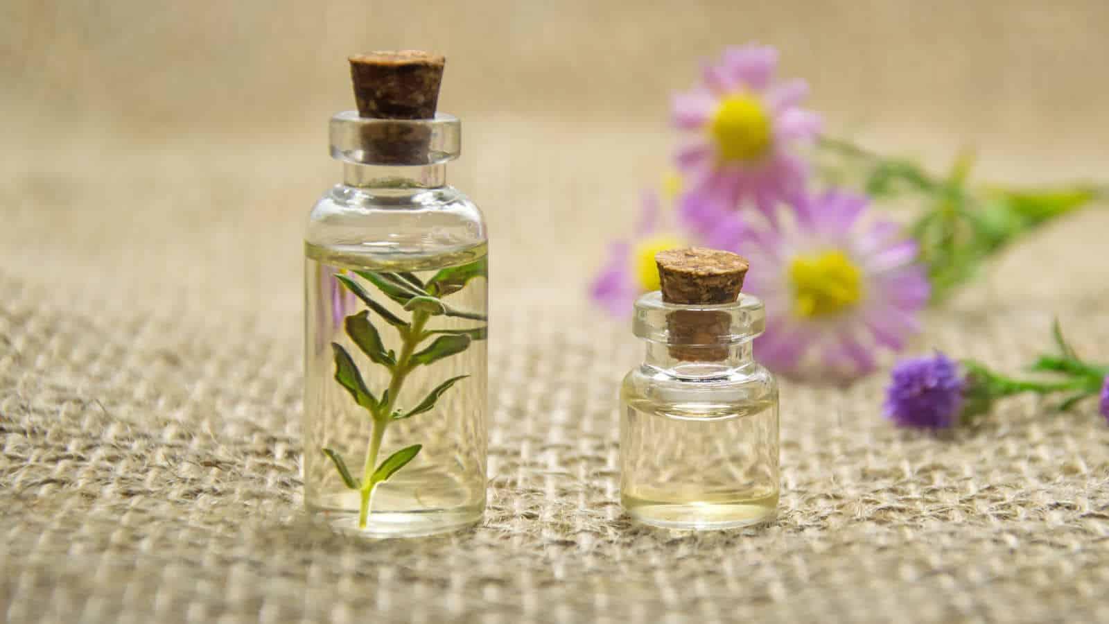 Arganöl gegen Pickel- So wirkt das Öl gegen Pickel, Akne & Co.