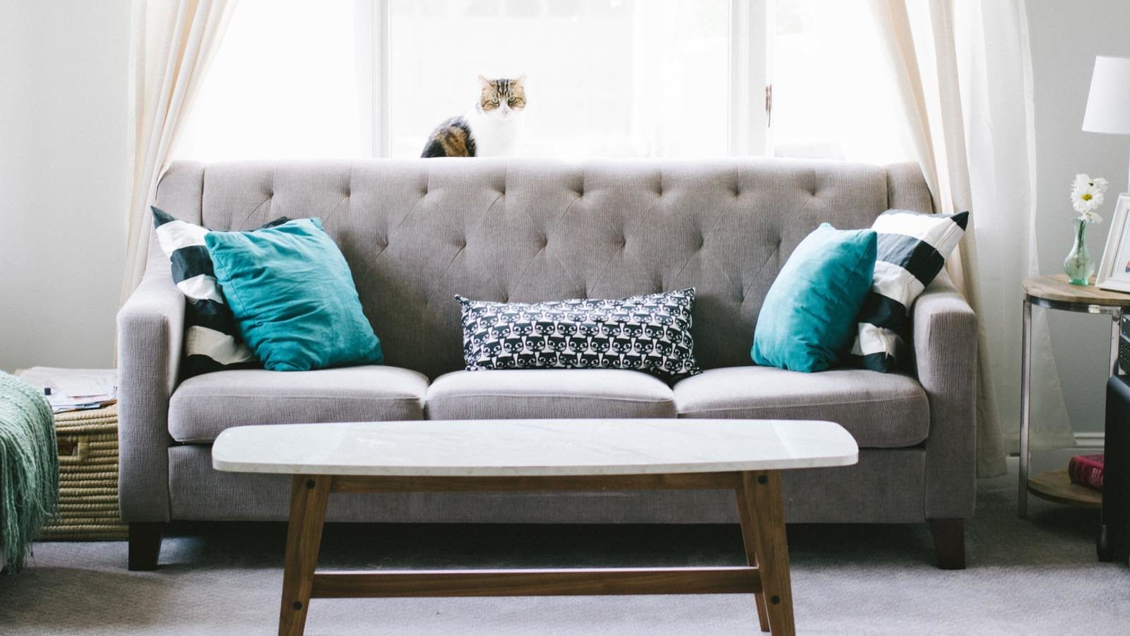 Sofa Reinigen Ultimative Anleitung Für Die Pflege Schlafzimmerde