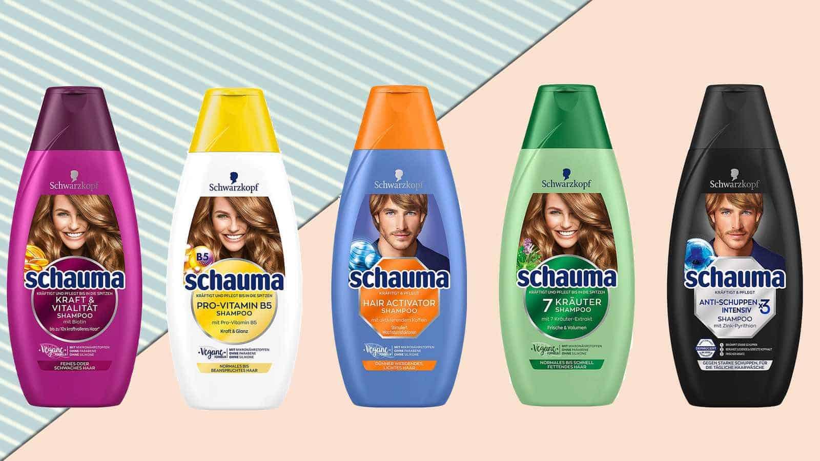 Schauma Shampoo Vergleich 2019- Die 10 besten im Vergleich