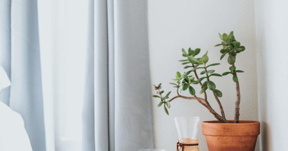 Die besten Vorhänge für das Schlafzimmer 2020 im Überblick